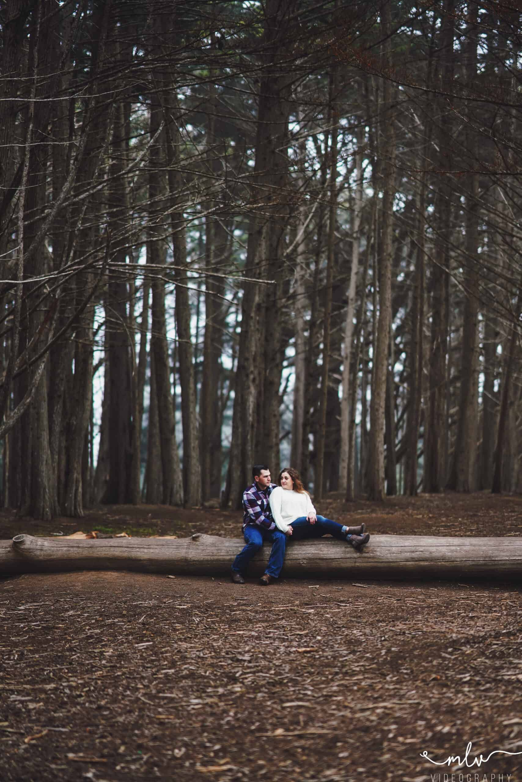 Engagement photography in Half Moon Bay California Seal Cove Cypress Tree Tunnel
