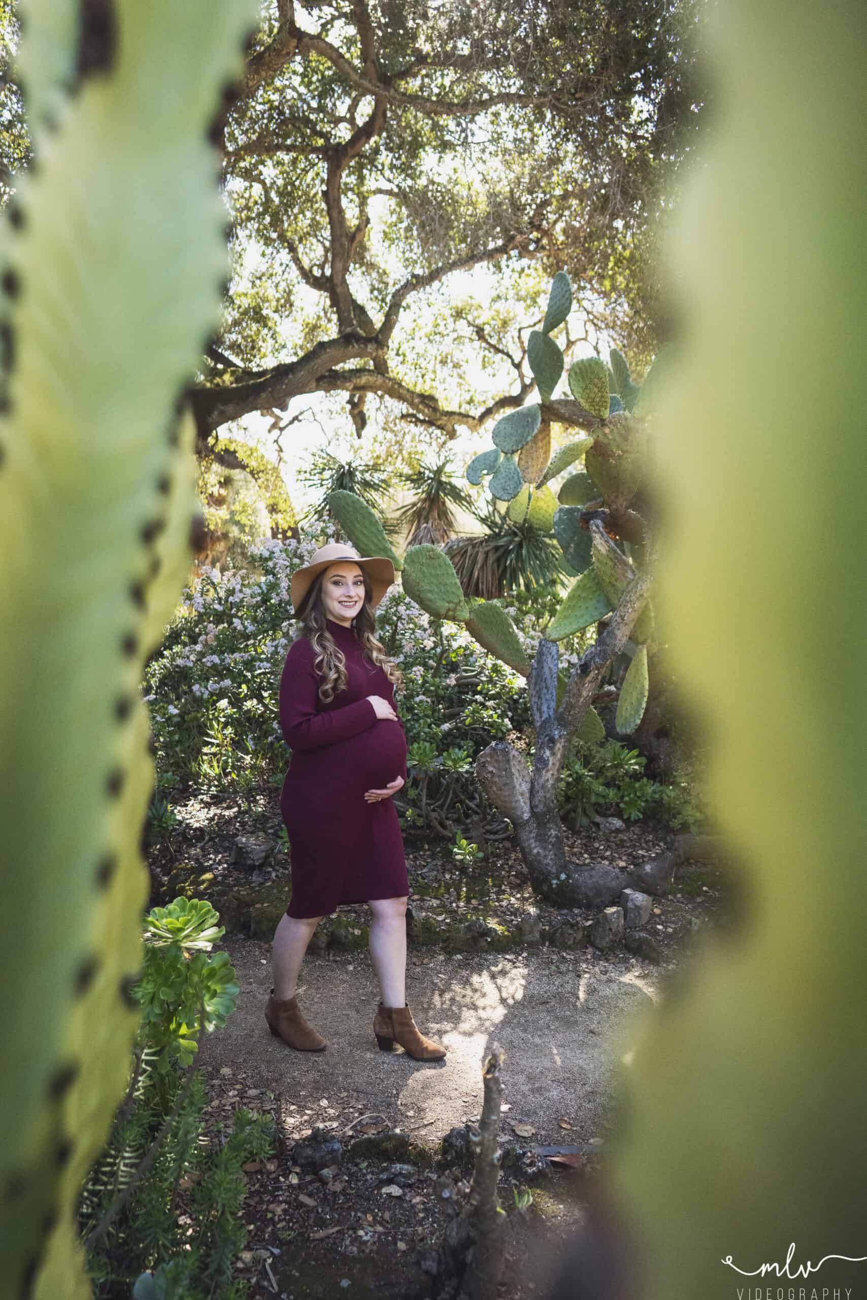 Maternity photography at Arizona Cactus Garden in Stanford University Campus